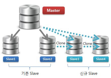 Tumblr Slave Data Clone